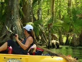 Kayak-tour-silver-springs