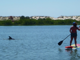 St Augustine Sup Tours