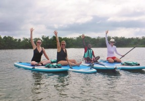 Catch the wave of stand up paddle board !
